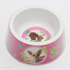 Small Size Pet Feeder