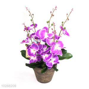 Creative Design Artificial Flower Bonsai Simulation Plant Fake Flower