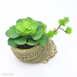 Hot sale bamboo root shape simulation succulent plants