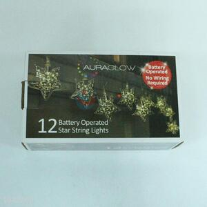Direct Factory 12 LED Lights Holiday Decoration