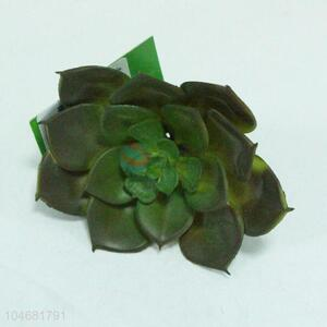 Best selling high simulation home decoration succulent