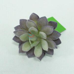 Popular high simulation home decoration succulent