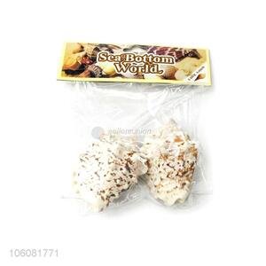 New design natural sea shell set best decoration