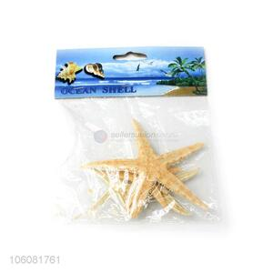 New products natural colorful shells starfish sea decoration